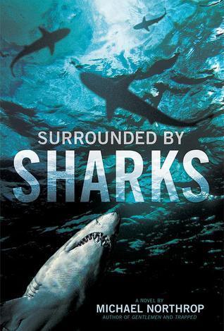 shark-front